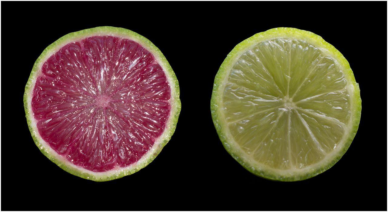 Lemon Tek Tolerance