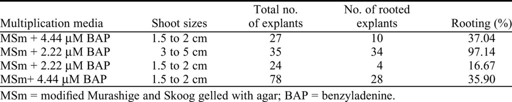 An Efficient Ex Vitro Rooting and Acclimatization Method for