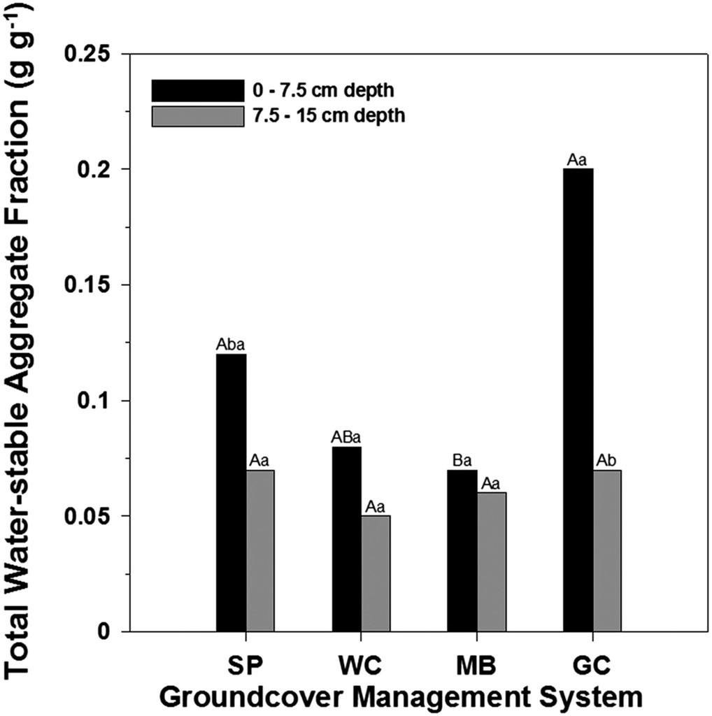 Groundcover Management System and Nutrient Source Impacts on Soil