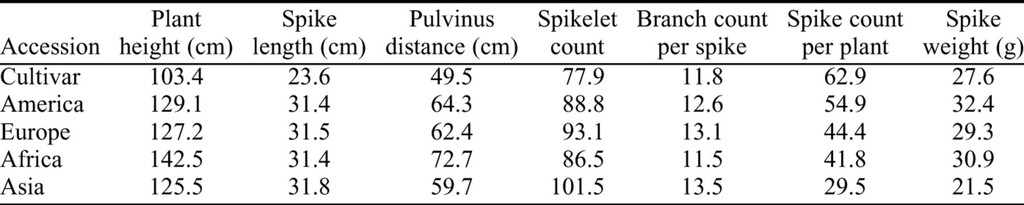 Genotypic Variation of Morphological Traits in Tall Fescue