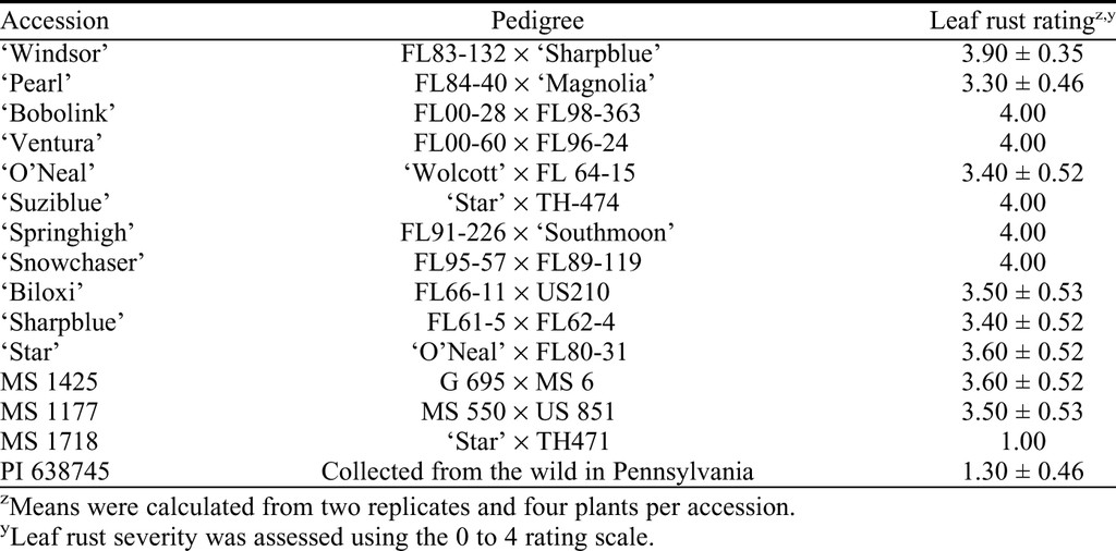 Reaction of Different Vaccinium Species to the Blueberry