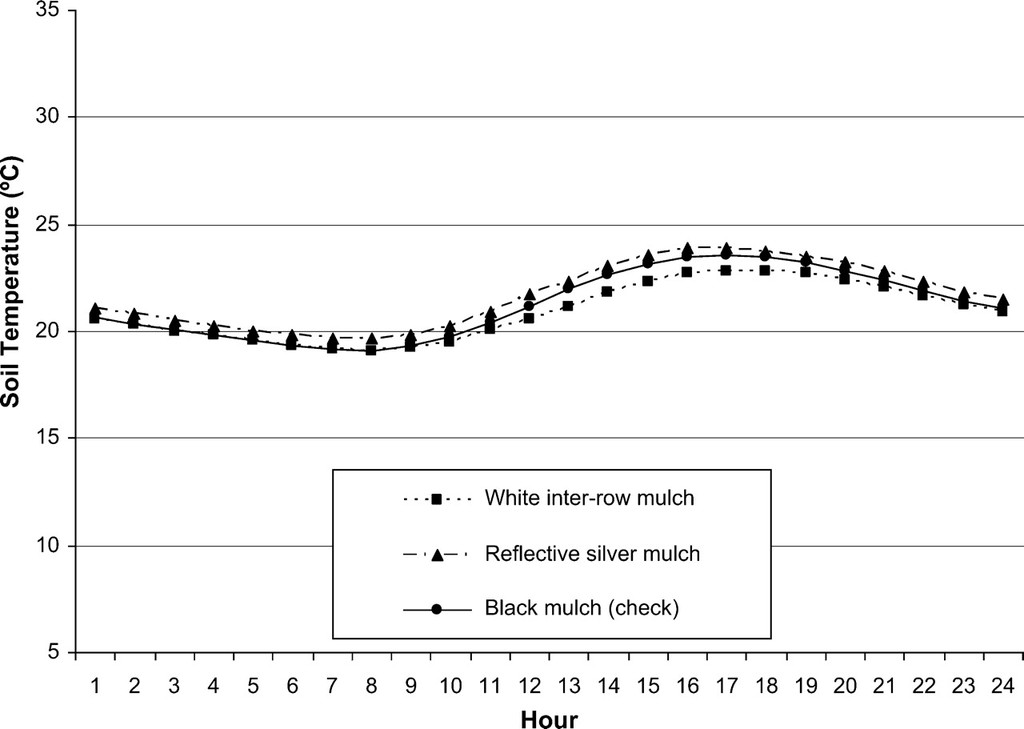 Effects of Silver Reflective Mulch, White Inter-row Mulch