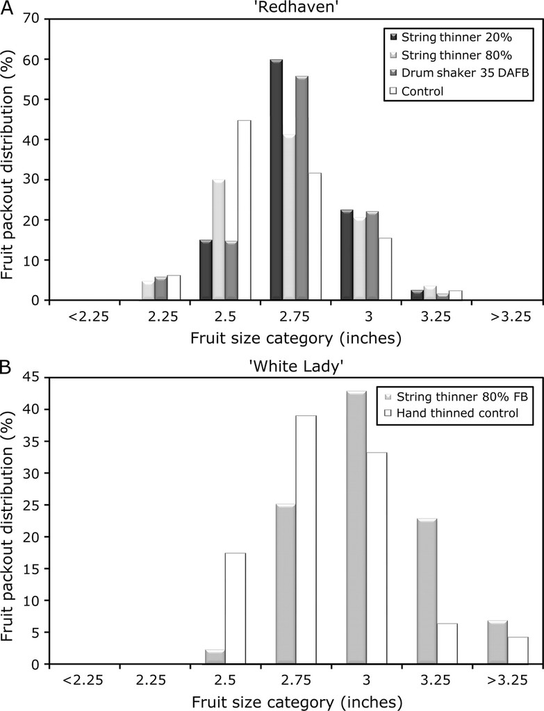 Mechanical Thinning of Peach and Apple Trees Reduces Labor