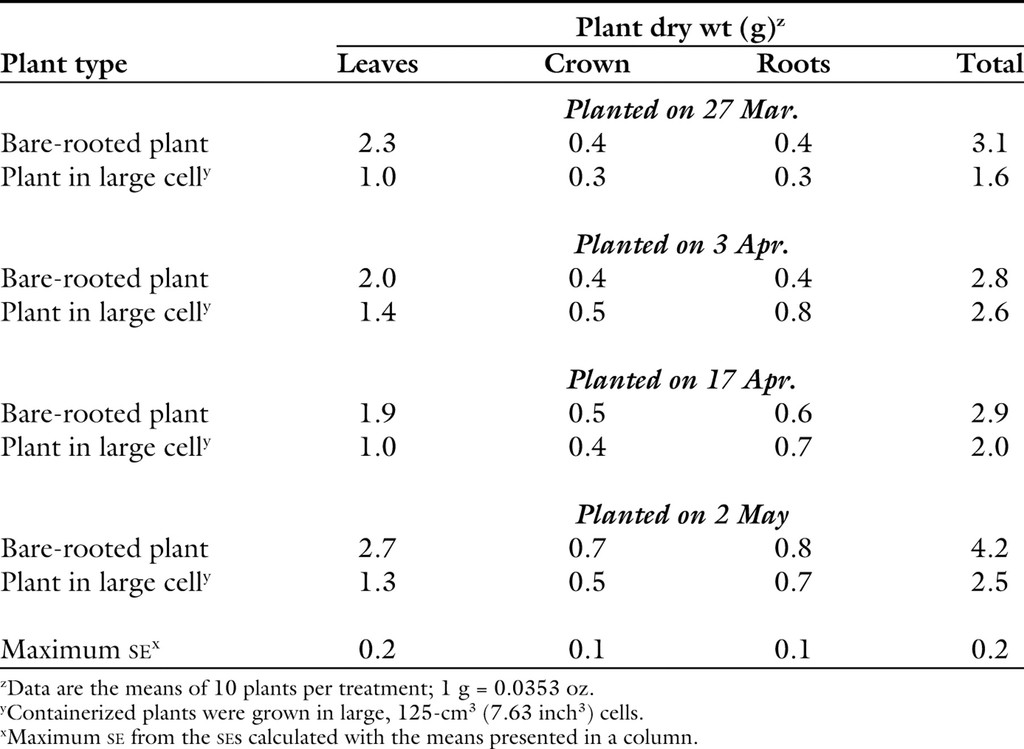An Evaluation of Containerized Plants for Strawberries