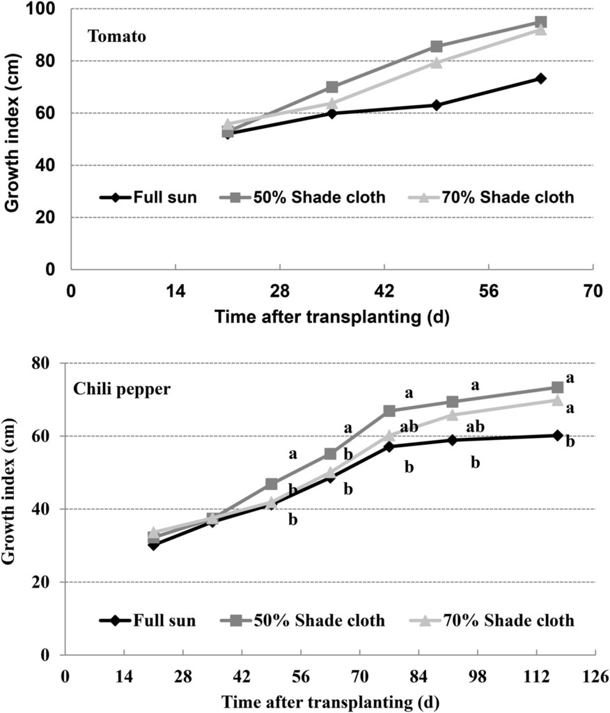 Shade Effect on Growth and Productivity of Tomato and Chili