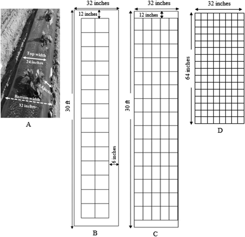Experimental Biodegradable Traffic >> Reliability Of Soil Sampling Method To Assess Visible Biodegradable
