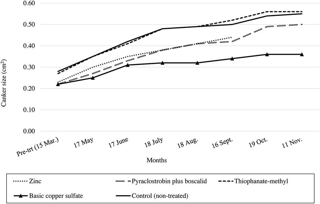 Efficacy of Fungicide Treatments for Control of Anthracnose
