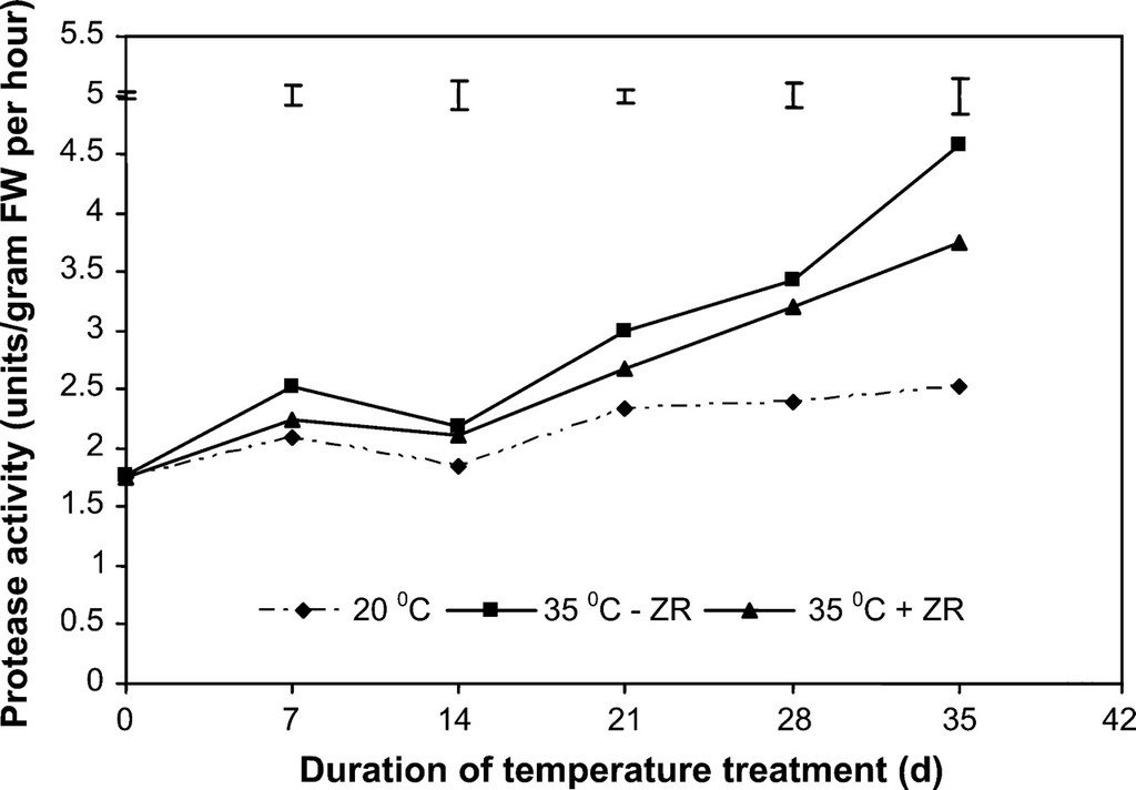 Leaf Senescence and Protein Metabolism in Creeping Bentgrass